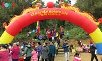 Lễ hội đền Hoàng Lục