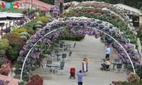 Chiêm ngưỡng vườn hoa lớn nhất thế giới