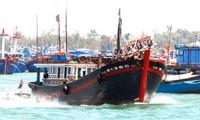 เรือประมงเริ่มออกทะเลจับปลาในเขตทะเลเฉื่องซา จังหวัดแค้งหว่า