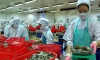สถานประกอบการเวียดนามพร้อมที่เจาะตลาดสหภาพเศรษฐกิจเอเชีย – ยุโรป