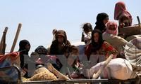 สหรัฐพร้อมประสานงานกับรัสเซียจัดทำกลไกรักษาเสถียรภาพในซีเรีย