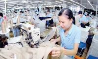 มูลค่าการส่งออกผลิตภัณฑ์สิ่งทอและเสื้อผ้าสำเร็จรูปของเวียดนามใน 6 เดือนแรกของปี 2017 เพิ่มขึ้น