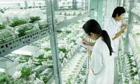 หารือถึงมาตรการเพื่อผลักดันการเกษตรที่ใช้เทคโนโลยีขั้นสูง