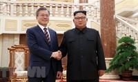 รัฐบาลสาธารณรัฐเกาหลีอนุมัติข้อตกลงสุดยอดสองภาคเกาหลี