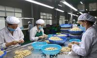 เวียดนามและอินเดียส่งเสริมวิสัยทัศน์ใหม่สำหรับความร่วมมือด้านการเกษตร