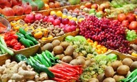ผลักดันการปฏิรูปการเกษตรให้ทันสมัยและยั่งยืนมากขึ้น