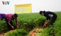 ผลักดันการเชื่อมโยง กุญแจแห่งการขยายตัวในการส่งออกสินค้าการเกษตร