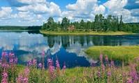 ฟินแลนด์ครองอันดับหนึ่งการจัดอันดับประเทศที่มีความสุขที่สุดในโลกปี 2019 ต่อไป