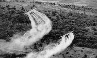 เวียดนามและสหรัฐให้ความสนใจเป็นอันดับต้นๆต่อการแก้ไขผลเสียหายจากสงคราม