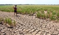 เขตที่ราบลุ่มแม่น้ำโขงวางแผนปรับตัวเข้ากับการเปลี่ยนแปลงของสภาพภูมิอากาศ
