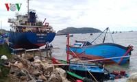 Quảng Bình: Bão số 2 (Talas) đánh chìm 27 tàu cá, 9 tàu hàng dạt vào bờ