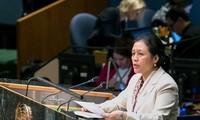 Việt Nam khẳng định lập trường ủng hộ giải pháp hai nhà nước