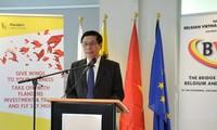 Doanh nghiệp Bỉ tăng cường hợp tác giao thương với Việt Nam