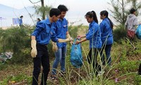 Gần 500 đoàn viên, thanh niên tham gia Chiến dịch Biển Việt Nam xanh