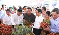 Khai mạc lễ hội vải thiều Thanh Hà 2018