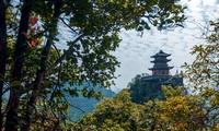 Khu Du lịch Tâm linh Chùa Tam Chúc – Nơi tổ chức Vesak 2019