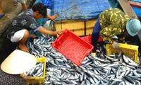 Nâng cao năng lực phát triển ngành thủy sản Việt Nam