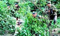 Hợp tác đấu tranh phòng chống ma túy và tội phạm qua biên giới