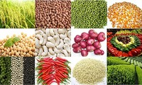 Mở rộng thị trường xuất khẩu nông sản