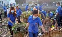 Các địa phương ở Việt Nam, hưởng ứng ngày Môi trường thế giới