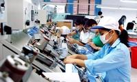 Thúc đẩy doanh nghiệp xuất khẩu Việt Nam phát triển bền vững