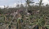เวียดนามเตรียมรับมือกับพายุโบพา