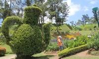 สวนดอกไม้เมืองดาลัตมีดอกไม้นานาพันธุ์