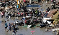 Indonesian authorities to allocate 43 million USD to assist tsunami victims