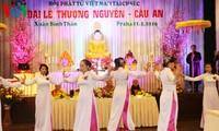 Sẽ tổ chức Đại lễ kỷ niệm 10 năm thành lập Hội phật tử Việt Nam tại CH Séc