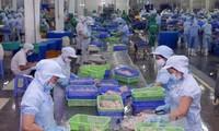 Mạng lưới các cơ quan thông báo và hỏi đáp của Việt Nam về hàng rào kỹ thuật trong thương mại