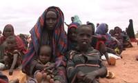 Cảnh báo 76 triệu người cần cứu trợ lương thực khẩn cấp trong năm 2018