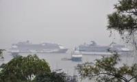 4 tàu biển quốc tế đưa hơn 6.200 du khách đến Hạ Long