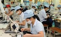 Doanh nghiệp dệt may Việt phát huy lợi thế, tăng tính cạnh tranh
