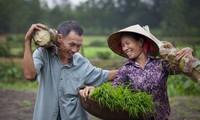 Việt Nam đạt thành tựu cao về bình đẳng giới