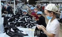 Hàn Quốc hỗ trợ doanh nghiệp dệt may Việt Nam tiếp cận công nghệ 4.0