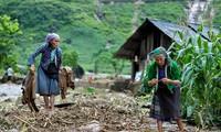 Tập trung các biện pháp khắc phục hậu quả mưa lũ các tỉnh miền núi phía Bắc