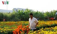 Tháo gỡ những vướng mắc để các làng nghề phát triển