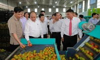 Thủ tướng Nguyễn Xuân Phúc làm việc với lãnh đạo tỉnh Lâm Đồng
