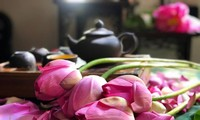 Trà ướp hương Sen Tây Hồ: Phong vị thanh tao đất Hà Thành