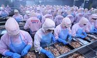 Giới chuyên gia đánh giá sự bùng nổ kinh tế của Việt Nam
