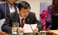 """Việt Nam ủng hộ """"Thúc đẩy và bảo đảm quyền con người"""" của LHQ"""