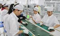 Việt Nam - Điểm đến hấp dẫn với các hãng chế tạo của Hàn Quốc