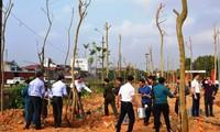 Các địa phương trên cả nước ra quân trồng cây đầu xuân Kỷ Hợi
