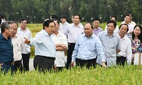 Phát triển bền vững vùng đồng bằng sông Cửu Long thích ứng biến đổi khí hậu