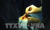 Chuyên gia Hàn Quốc phẫu thuật miễn phí dị tật khe hở vòm miệng cho trẻ em Việt Nam