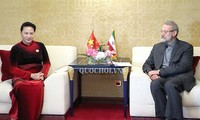 Việt Nam luôn coi trọng quan hệ hữu nghị và hợp tác cùng có lợi với Iran