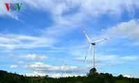 Việt Nam sẽ là điểm đầu tư hấp dẫn của các dự án điện gió