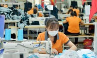 Cơ hội của Việt Nam từ Hiệp định EVFTA