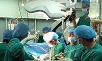 Hợp tác Việt Nam - Nhật Bản trong đào tạo, phát triển nguồn nhân lực ngành Y tế