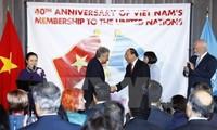 Мировое сообщество высоко оценивает вклад Вьетнама в деятельность ООН за прошедшие 40 лет